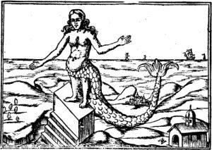1-mermaid